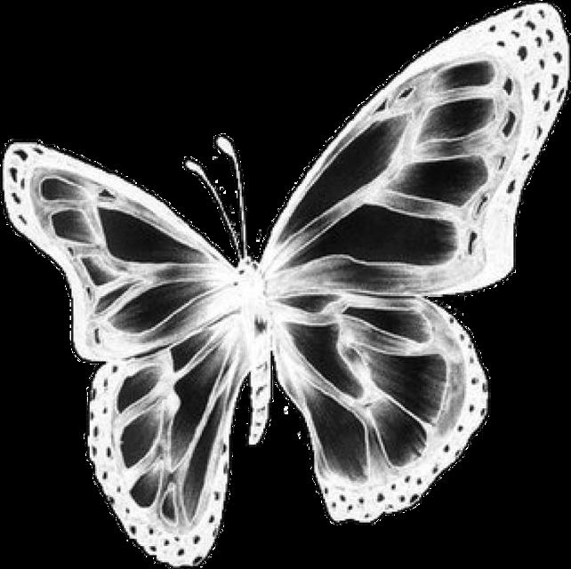 #butterfly #butterflies #draingang #drainedit #aesthetic #goth #cybercore #blackandwhite