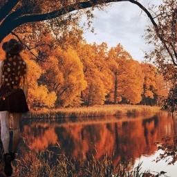 autumnfalls autumnlleaves octobervibes srcautumnleaves autumnleaves freetoedit