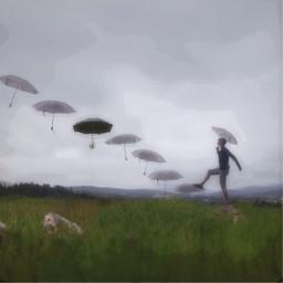 umbrella blackumbrella field freetoedit ircundertheumbrella