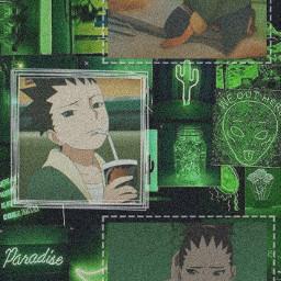 shikadai shikadainara nara wallpaper aesthetic green anime boruto otaku freetoedit