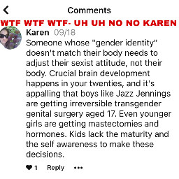we say no to transphobic attitudes comma bad karen