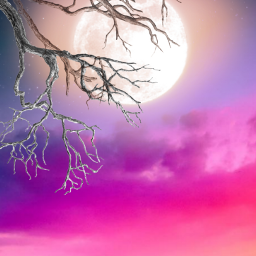 freetoedit cloud clouds sky pink background backgrounds araceliss moon