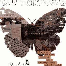 thank love 100followers