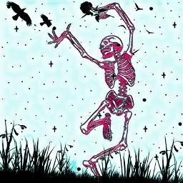 spooky skeleton crows freetouse freetoedit
