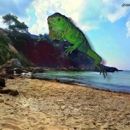 mastershoutout giantanimals iguana lizard reptile photomanipulation green beach background freetoedit