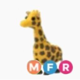 freetoedit giraffe adoptmeroblox adoptme roblox megagiraffe adoptmetrade adoptmepets