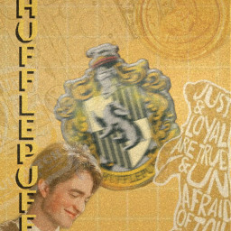harrypotter hufflepuff cedricdiggory aestheticedit aesthetic yellowaesthetic yellow gold hpotter badger interesting art freetoedit