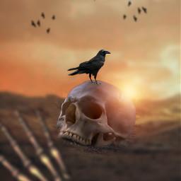 land surreal darkart dark madewithpicsart heypicsart madebyme myedit editbyme skullart skull freetoedit