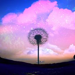 dandelion mushroomhouse mushroom home newworld night nightsky sky clouds stars mountain town freetoedit ircdandelionsilhouette dandelionsilhouette