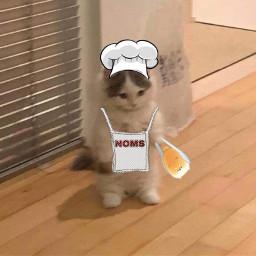 loaf freetoedit