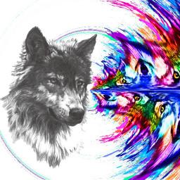 wolfart freetoedit