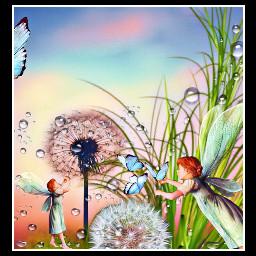 dewdrops interesting freetoedit ircdandelionsilhouette dandelionsilhouette