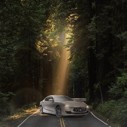 car whitecar enchantedforest headlights magicalcar carlovers lightray reflection forest dark freetoedit ircgorgeousforest gorgeousforest