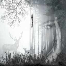 freetoedit picsart vipshoutout picsart100million doubleexposure dobleexposicion forest forestgirl blackandwhite dailyinspiration dailytag facegirl desafio challenge remixgalleries wall gallery remix remixit remixed