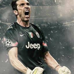 gianluigibuffon🇮🇹 buffon🇮🇹 buffon football⚽ futebol⚽ goleiro goalkeeper italy🇮🇹 italia🇮🇹 gianluigibuffon football futebol italy italia