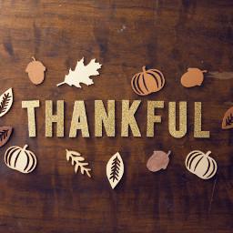 thankful thanks thankyou thanksgiving celebration freetoedit