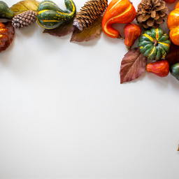frame pumpkin thankful thanks thankyou thanksgiving celebration freetoedit