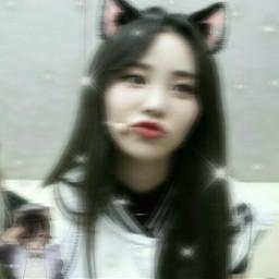 aestheticedit aesthetic loona oddeyecircle jinsoul catgirl bts