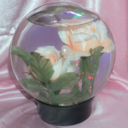freetoedit jar glass flowers