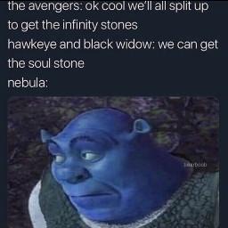 meme avengers hawkeye blackwidow nebula soulstone shrek happybirthday karengillan
