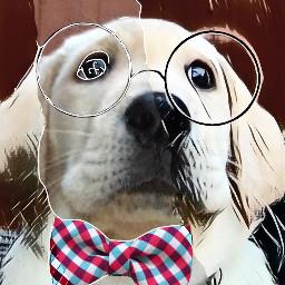 puppylover freetoedit