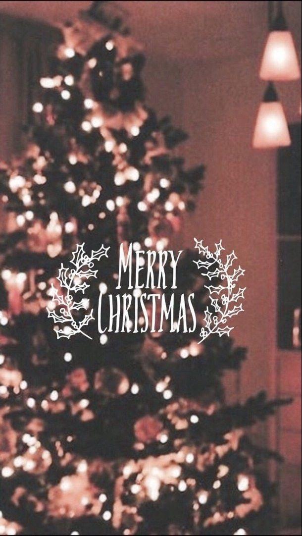 #marrychristmas #freetoedit #winter #newyear #happynewyear #cristmas #новыйгод #рождество #зима #marrychristmas #freetoedit #winter #newyear #happynewyear #cristmas #новыйгод #рождество #зима #ель