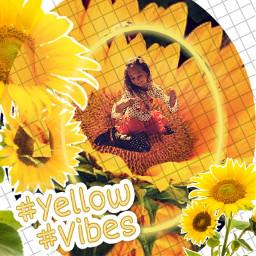 scfireart grandchild sunflower freetoedit rcyellowvibes yellowvibes