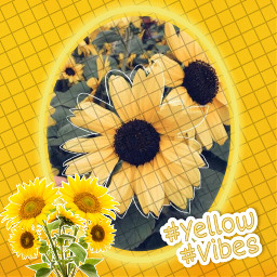 yellow yellowvibes aesthetic freetoedit rcyellowvibes