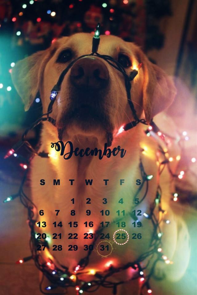 #december #calendarchallange