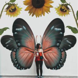 buterfly surreal madewithpicsart heypicsart papicks myedit mycreation fauspre freetoedit