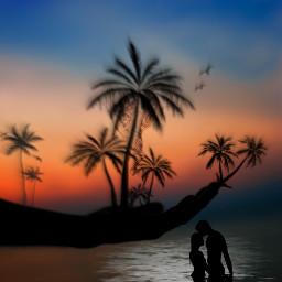 island palmtrees water shilouette freetoedit ircfallingleaf fallingleaf