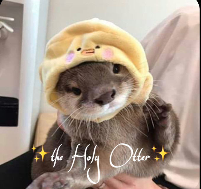 Here I represent you ✨the Holy Otter✨ read to the end please   You cant agree they are the cutest living creatures on this goddamn planet!!!! 😾  Just look at it!!!  Doenst this just melt your heart❤️ I just wanna give them all a huggggg!!! 🥺  If I where allowed to simp for otters I WOULD-    Did you know otters hug eachother!!! And they do float on their backs on water 😩💕  They. Even. Have. Their. Own. Special. Rock. ROCK!! ❤️  *casually dies of cuteness* 💀        Me and @jessiebear2020 luv them 💕 And now its your turn to😾✋  I will make an channel on Discord named ✨Oter squad✨ If you wanna join let me know your username in on Discord in the comments UwU  #otters #otterlove #ottermeme #ottergang #ottersquad #otterwithduckiehat #duckie #duckiehat #theholyotter #yellow #brown #grey   @jessiebear2020 @-that_one_crackhead- @-_bxby_angxel_- @kittykittymowmo @_ashotka_126 @_official-himiko_ @eylultoprak0107  @karma1906 @psychic_friend_fred 💕    Baiiii!!