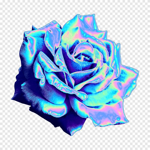 #роза #розочка #перелив #светится #светещаяся_роза #rose #зеркальная