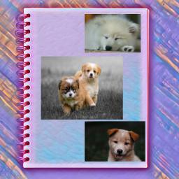 puppylove pastel favorite freetoedit