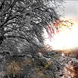 historiasdes_veladas_de_mi_dia_a_dia bianditz snow sun