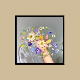 flower paintpallette freetoedit