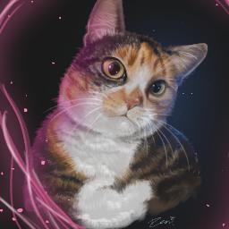 challenge drawing pet petportraot wacom digitalpainting photoshop adobe adobephotoshop illustration art digitalart cat freetoedit