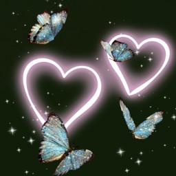 love butterflys freetoedit