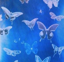 freetoedit aesthetic tumblr vsco colors colorful background yellow ilusion rainbow blue indie indieaesthetic butterfly alt