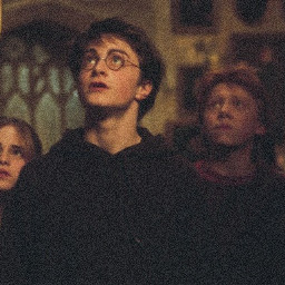goldentrio harrypotter hermionegranger ronweasley darkacademia foryoupage fyp viral hogwarts hogwartsismyhome potterhead potterheadforever gryffindor hufflepuff ravenclaw slytherin🥧 slytherin