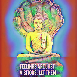 buddha feelings visitor letitgo buddhaquotes