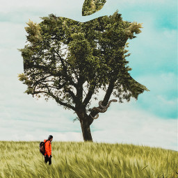 surrealism tree spider apple man madewithpicsart freetoedit