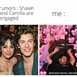 shawnmendes shawn mendes mendesarmy shawnie memes shawnmendesmemes