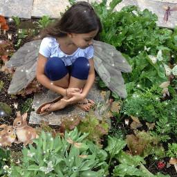 fairy fairycore fairygarden frog flowerfairy freetoedit