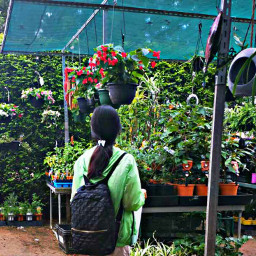 nursery gardenlovers freetoedit