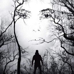 man alone trees girl face love freetoedit