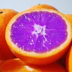 a_purple_orange
