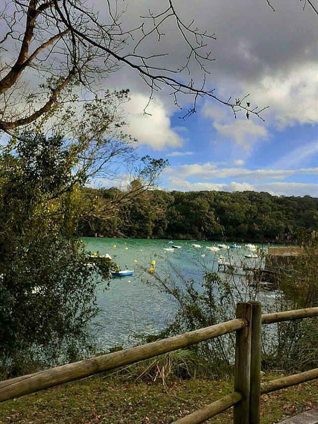Euskal Kostaldea #kantauriitxasoa  #kantabricsea  #clouds  #winter  #boatsinwater  #trees  #branches  #naturephotography