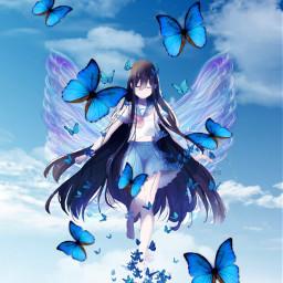 anime butterflies freetoedit