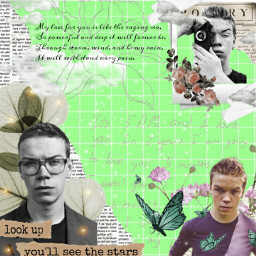 willpoulter gally